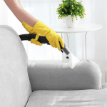 How Often Should I Have My Sofa Cleaned?
