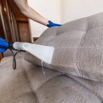How to Find a Professional Upholstery Cleaner in Sydney?
